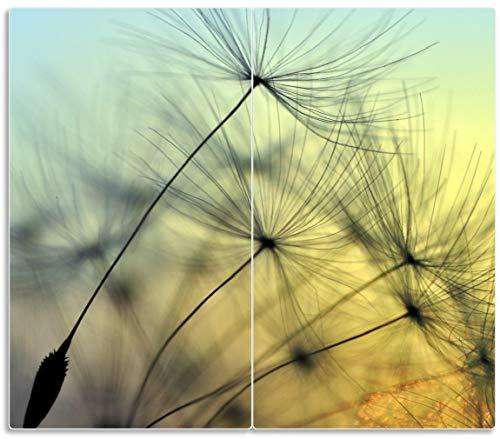 Wallario Herdabdeckplatte/Spritzschutz aus Glas, 2-teilig, 60x52cm, für Ceran- und Induktionsherde, Samen der Pusteblume in Nahaufnahme vor blauem Himmel