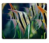 Yanteng 17P11745 Creatividad Mousepad Gaming Mouse Pad Angel Fish Material de Caucho Natural