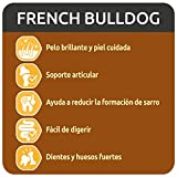 Zoom IMG-1 ultima cibo per cani french