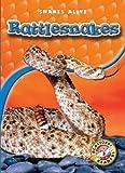 Rattlesnakes (Paperback) (Blastoff! Readers: Snakes Alive)