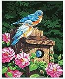WOWDECOR Kit de pintura por números para adultos y niños, pintura al óleo de bosque, flores rosas y pájaros azules, 40,6 x 50,8 cm (X7051, sin marco)