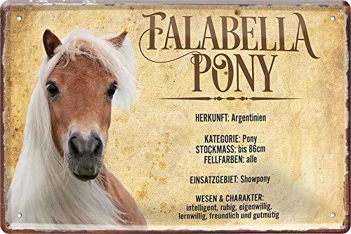 """Blechschild Pferde Spruch & Motiv """"Falabella Pony"""" Deko Pferd Hängeschild Türschild Metallschild Hauseingang Reiten Schild Geschenkidee für alle Pferdebesitzer oder Pferde Fans 20x30 cm"""