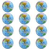 Globe Stress Balls 1 Dozen Earth Foam Squeeze Balls with World Map 2.5 Inch World Stress Ball Earth Stress Relief for Class/Pressure Relief/Party Favor (Globe)