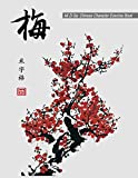 """Mi Zi Ge: Chinese Character Exercise Book (Practice Notebook for Writing Chinese Characters), page size: 8.5""""x11"""", 106 pages for writing, 12x16 cells ... cell size: 0.53""""x0.53"""" (Chinese Workbook)"""