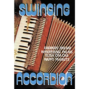 Swinging Accordeon