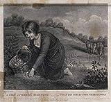 Richard Westall Giclee Imprimir en lienzo-Pinturas famosas Arte fino Póster-Reproducción Decoración de pared(Una niña con una pelota de baloncesto recolectando setas en un prado y agua) #XFB