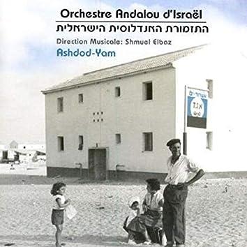 Ashdod Yam