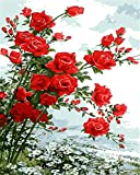 N\A Cuadro Lienzo DIY - Rosa, Rojo, Margarita, Blanco - Pintura Al Óleo Pintura por Numeros Adultos Niños Manualidades para Pintar