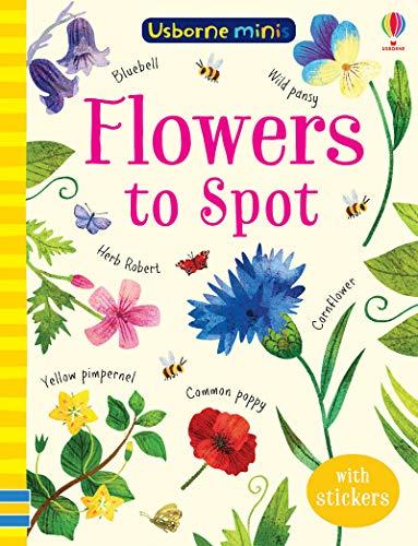 Flowers to Spot (Usborne Minis)