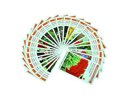 Planti'cartes : Jeux de reconnaissance des plantes exotiques et d'ornement - Avec 62 cartes à jouer