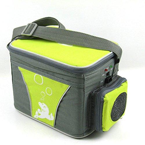ZHDWM Hot Box Mini-koelkast, 4 liter, voor in de auto, met dubbele verwarming, voor koelkast, halfgeleider, picknick