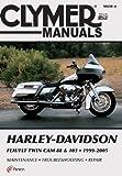 Harley-Davidson Electra Glide, Road King, Screamin' Eagle Motorcycle (1999-