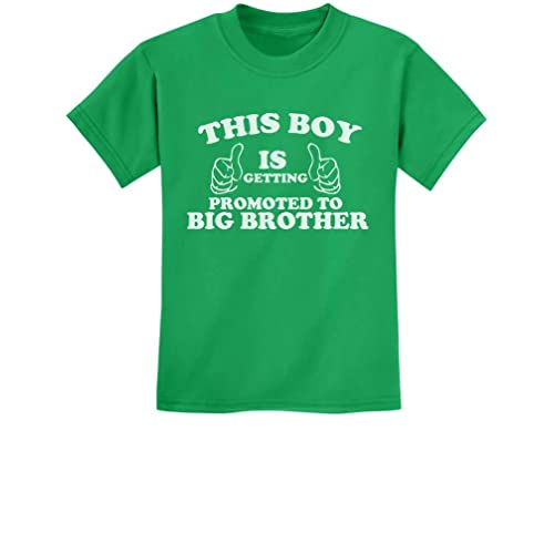 Big Sister Est 2016 Sibling Gift Idea Newborn Baby Kids T-Shirt Family Clothing