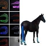 ホーステールライト、USB充電式LED馬用馬具の乗馬、色の装飾 ダイビング材、アウトドアスポーツ