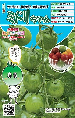 【ミドリちゃん】緑色に甘熟するミニトマトの種 (8粒)