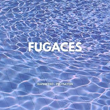 Fugaces
