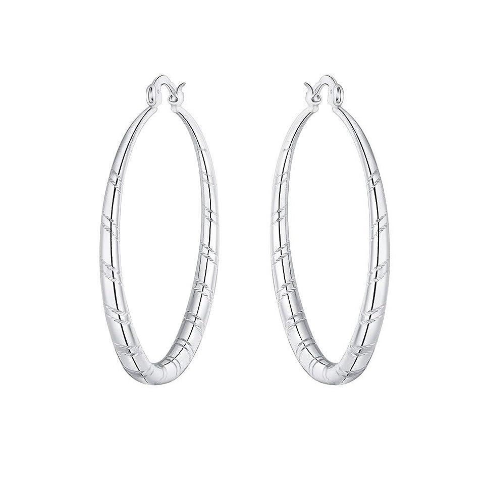 再生見つけた排除するNicircle 女性 シルバー スタッドブラブライヤリングファッションクラシックブラブライヤリング Women Silver Stud Dangle Earings Fashion Classic Dangle Earring