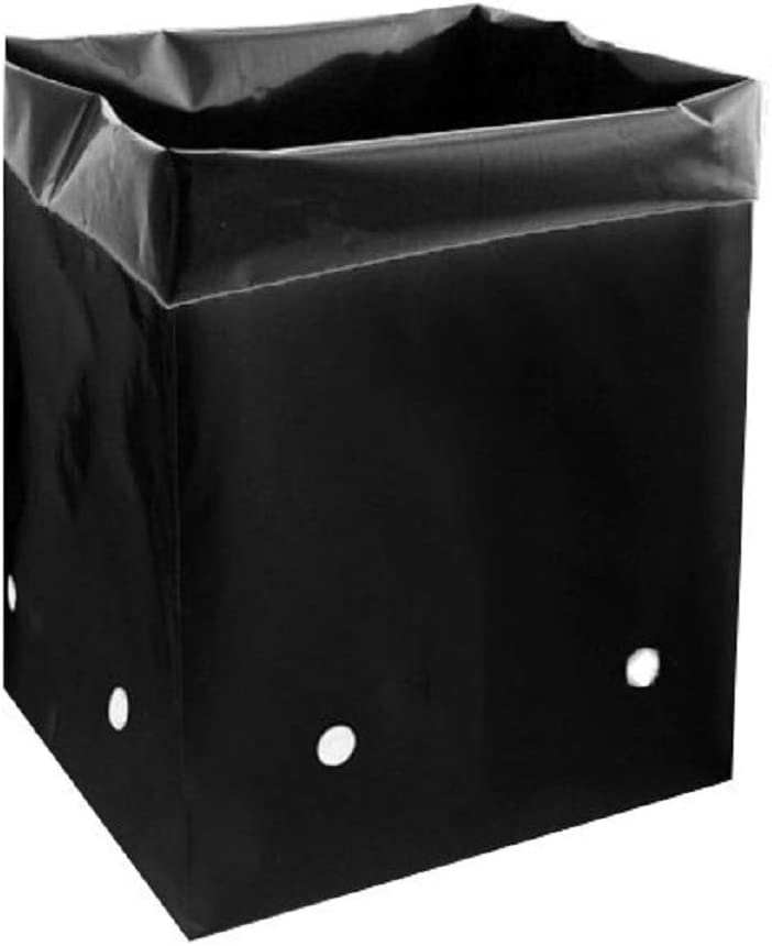 DL Wholesale Grow1 Plastic PE Grow Black Finally New item popular brand Plants for Bags All