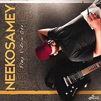 Neekosamey (feat. Arin Dez)