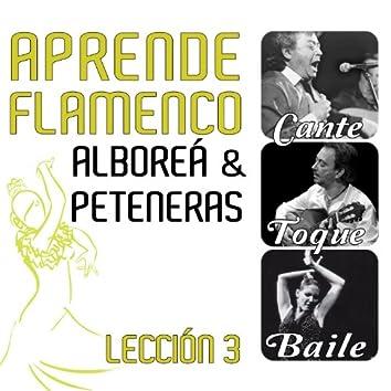 Aprende Flamenco. Alboreá y Peteneras. Lección 3