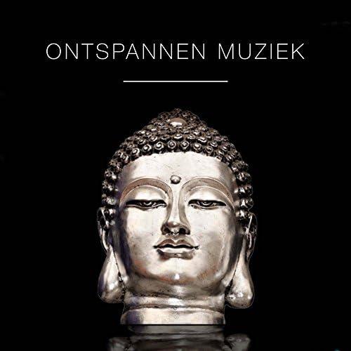 Massage Music & Rain Sounds & Flauta Orchestra 10