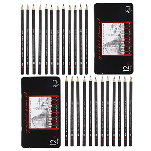 Gaosaili 24 Stück Skizze Bleistift Set, Graphit Bleistifte Professionelle Bleistifte Zeichenstifte Skizzierstifte für Skizzen Zeichnen Grafitti Zeichnung, 8B- 2H (2 Kästen)
