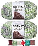 Big Ball Blanket Yarn 2-Pack Bundle by Bernat Plus 6 Blanket Yarn Patterns Super Bulky #6 10.5 Ounce Ball 220 Yards (Lilac Leaf)