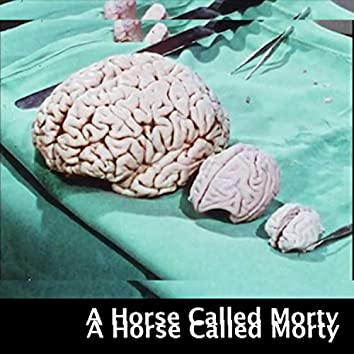 A Horse Called Morty
