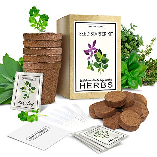 Indoor Herb Garden Starter Kit - Organic, Non GMO - Seed Packets, Pots, Markers, Soil Mix - Fresh Basil, Cilantro, Parsley, Sage, Thyme