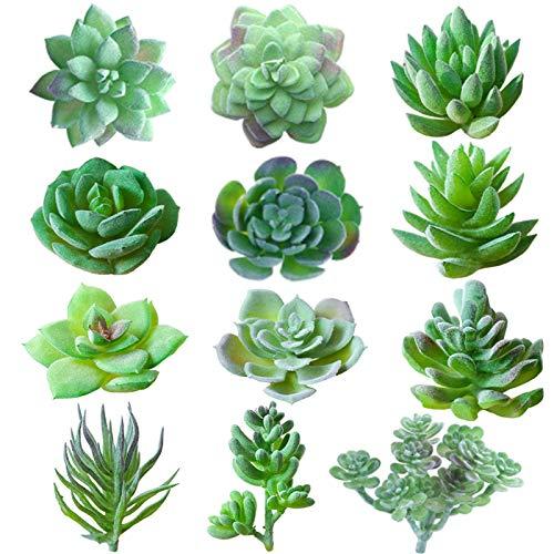 Piante Succulente Artificiali, TRUBUY 12 Pezzi Floccati Succulente Finte Varie Piante Realistiche Piccole Piante Grasse Finti per DIY Casa Giardino Decorazioni