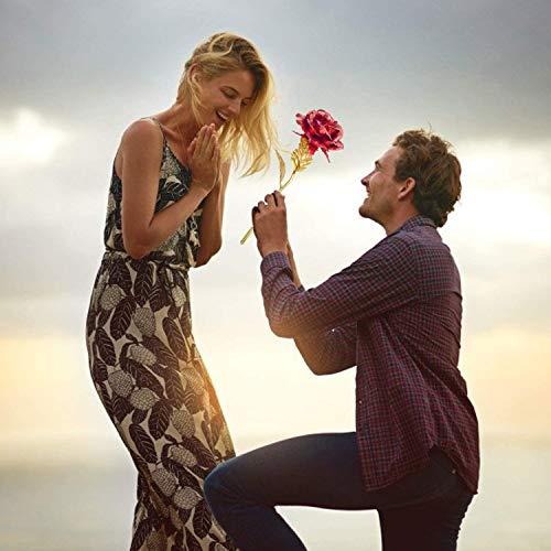 Chapado en oro rosa de 24 quilates, tallos largos elegantes de rosas elegantes, caja de regalo de lujo, atemporal y exquisito, boda, regalo perfecto (rojo + soporte)