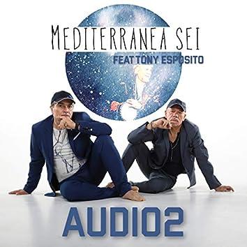 Mediterranea sei