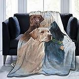 Dafushi Labrador Dog Lab Yellow Chocolate Soft and Warm Throw Blanket Digital Printed Ultra-Soft Micro Fleece Blanket(50x40, 60 X 50, 80 X 60)