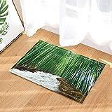 Alfombra de bambú exótica natural cascada interior antideslizante, alfombrilla de baño, lavable 45 x 75 cm, decoración del hogar