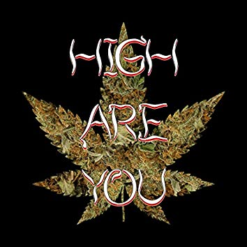 High Are You? (feat. Elle)
