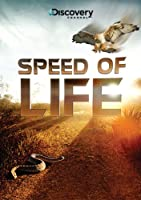 Speed of Life [DVD] [Import]