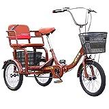 zyy Triciclo para Adultos con Cestas 1 Marchas de 16 Pulgadas...