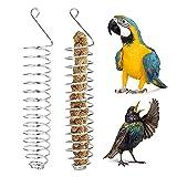 YeenGreen Cesta de Frutas para Pájaros, 2 Piezas Alimentador de Pájaros de Acero Inoxidable Pincho para Frutas y Verduras de Acero Inoxidable para Pájaros,Periquitos,Cacatúas