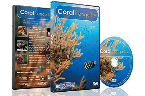 Underwater DVD   Coral Tranquility 2016   Calming Scenes of Tropical Fishes and Relaxing Music