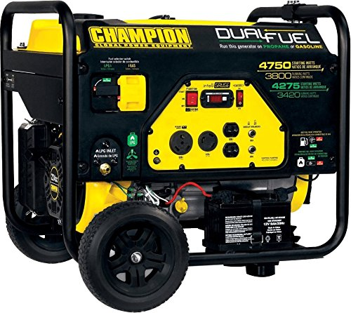 Champion Power Equipment 76533 3800 Watt Dual Fuel RV Ready Portable Generator with Electric Start, Gasoline/Propane Powered, 24 hours Duration Subjects