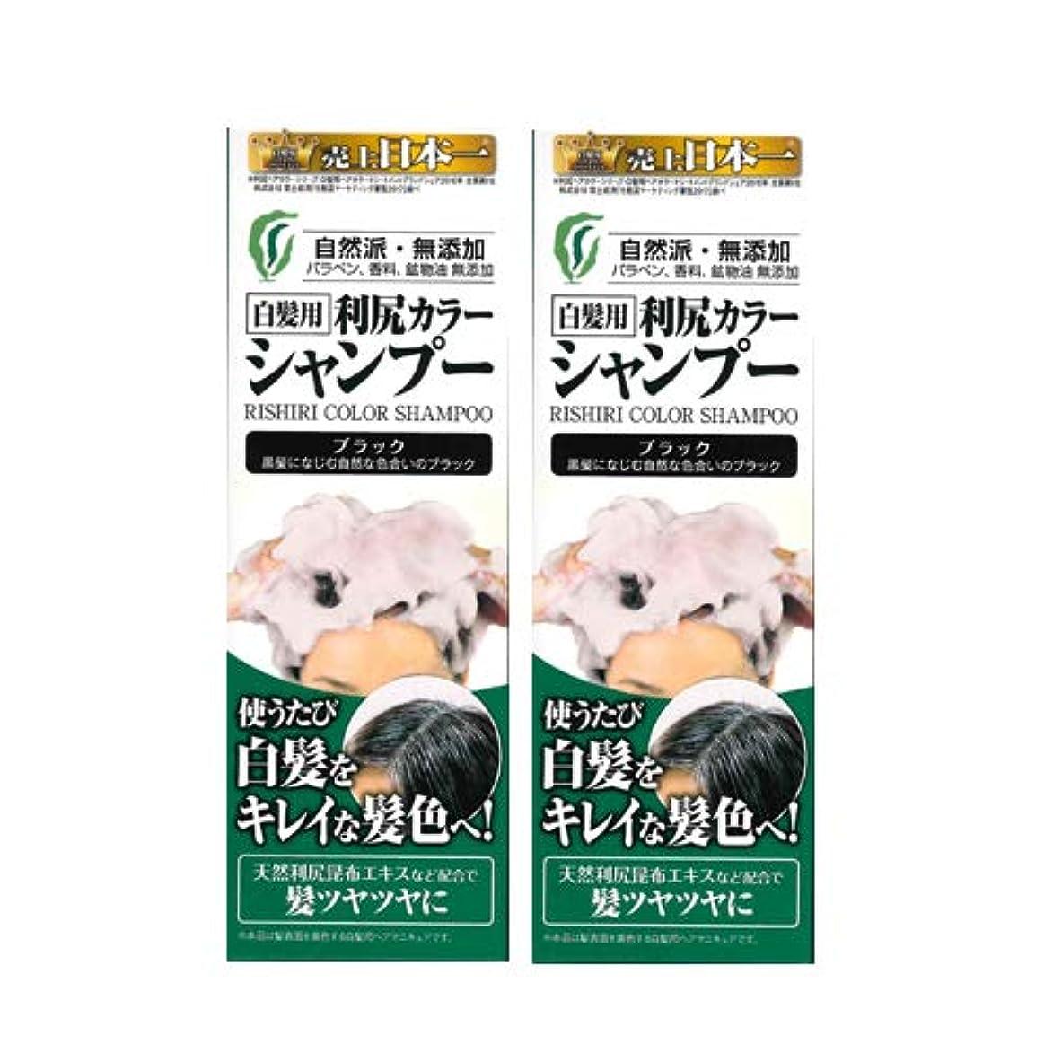 パラメータ群集ペダル利尻カラーシャンプー2本セット(ブラック)