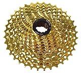 FYLYHWY 9 10 11 Velocidad Velocidad de Oro Bicicleta de Bicicleta Cassette 10 Velocidad 11-32T / 36T / 42T Sprocket Ultralight MTB Bike Cassette Pieza de Bicicleta (Color : 11S 11 42T)