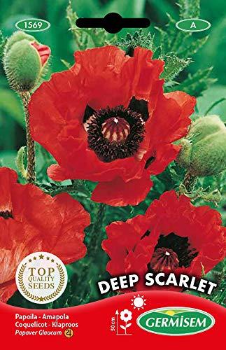 Germisem Deep Scarlet Semillas de Amapola 1 g