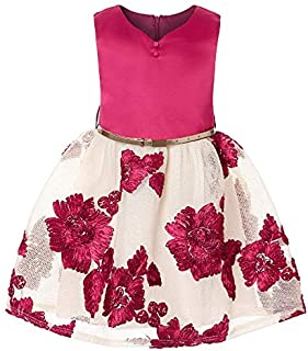 Girl Sleeveless Lace Holiday Princess Dresses