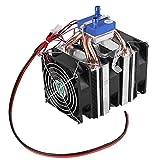 Walfront DIY Mini Dual-Core Elettrico Semiconduttore Modulo Refrigerante Termoelettrico Peltier Frigorifero Radiatore di Pesce Serbatoio Raffreddamento Ventilatore(120W)