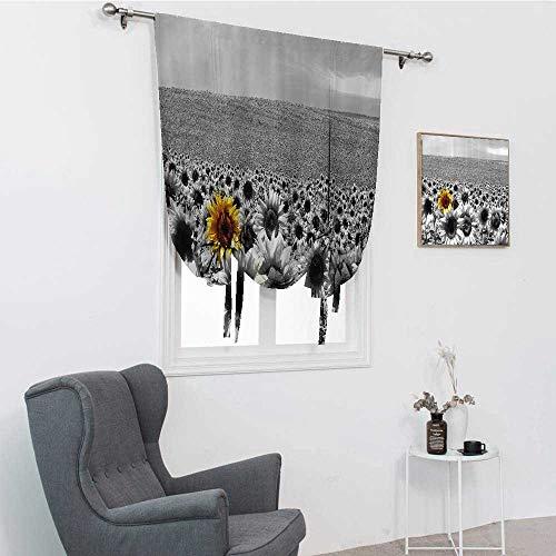 Tonos romanos de grifo ancho para ventanas, campo de girasol, todo en blanco y negro con una sola flor amarilla paisaje de primavera sombra de ventana romana, gris, 76,2 x 162,6 cm