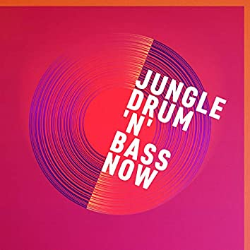 Jungle, Drum 'n' Bass Now