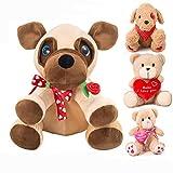 10' Valentine's Day Valentines Gift for Girlfriend, Boyfriend, Plush Stuffed Animal (Red Rose)