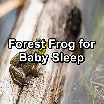 Forest Frog for Baby Sleep