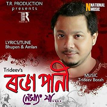 Ronga Pani Nakhang Jaa - Single